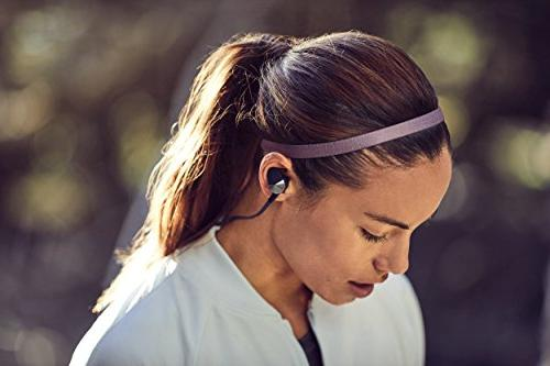 Fitbit Wireless Nightfall